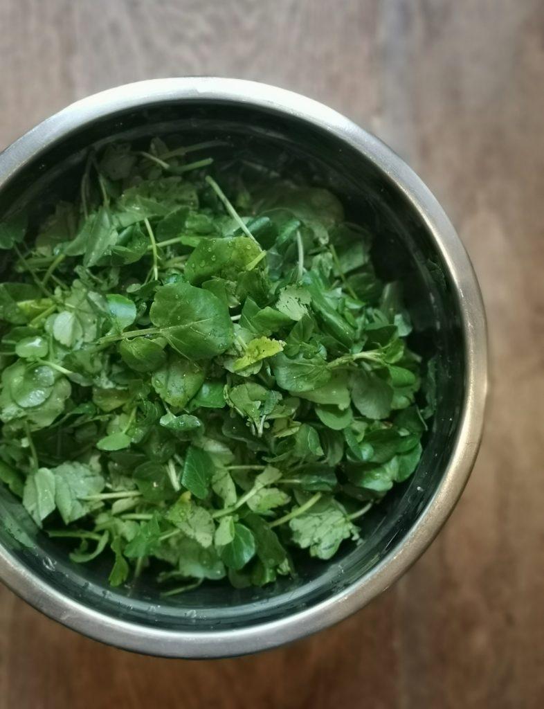 Le cresson est un légume feuille d'hiver